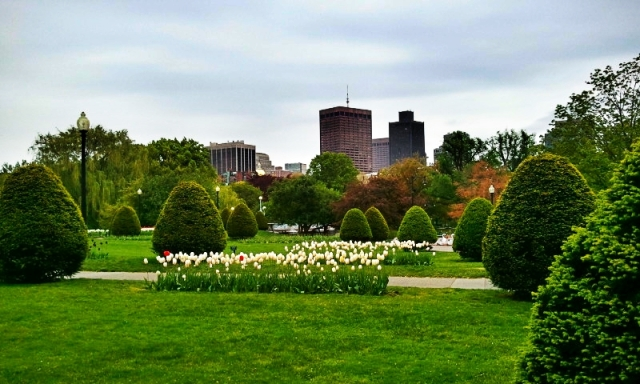 Boston Public Garden, view, city skyline, garden, Boston, Massachusetts, USA