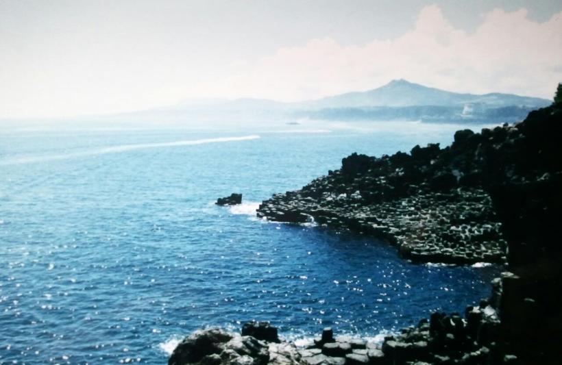 Jusangjeolli Cliffs, Jejudo Island, Jeju-Do, South Korea, travel, photography, Asia, nature, outdoors, rock formations, TS76