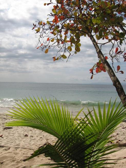 Playa Blanca, Costa Rica, View, Pacific Ocean, Tiquicia, Visit Costa Rica