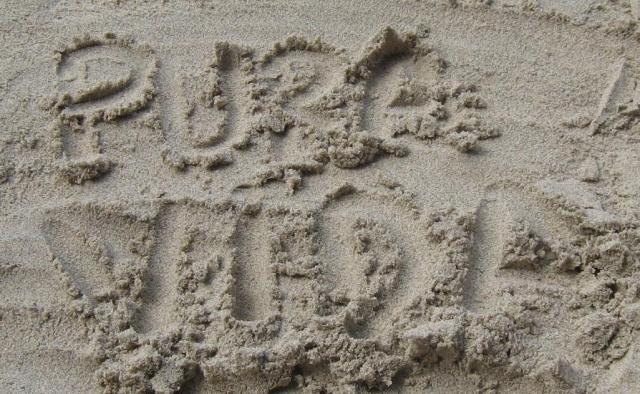 Pura Vida, white sand, Pacifico, Pacific, Tiquicia, Visit Costa Rica