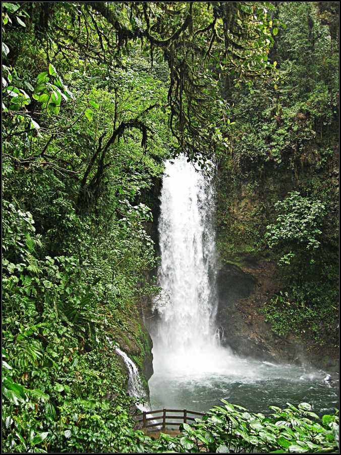 Waterfall, Costa Rica, Water, Fall, Frifotos,