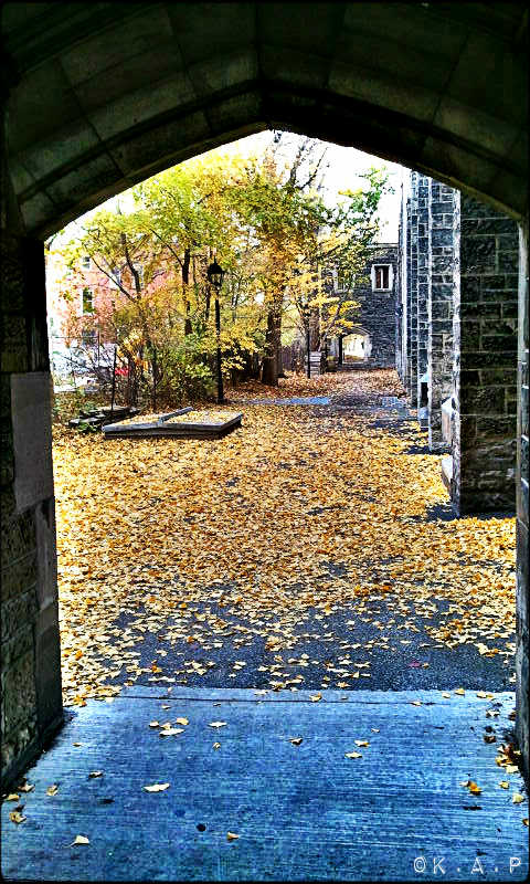 University of Toronto, UofT, St George campus, outdoor, secret passage, historic building,