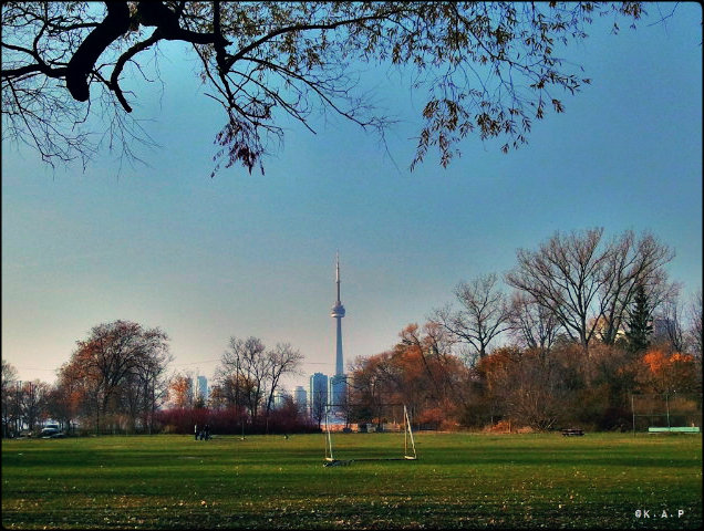 outdoor, soccer field, city view, Ward's Island, Toronto Ferry Docks, Ferry, Toronto, Ontario, Canada
