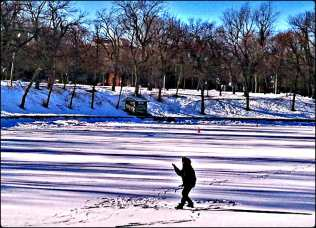 Qi Gong, Lake, Lac, Parc Lafontaine, Lafontaine Park, Montreal, outdoors, winter