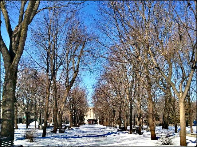 Parc Lafontaine, Lafontaine Parc, Montreal, Winter, outdoor, snow