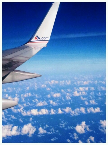 sky, aviation, American Airlines, wing, airplane, sky, blue sky