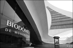 biodome, biodôme, montreal,