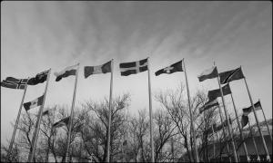 flags, international flags, montreal, display, olympic stadium