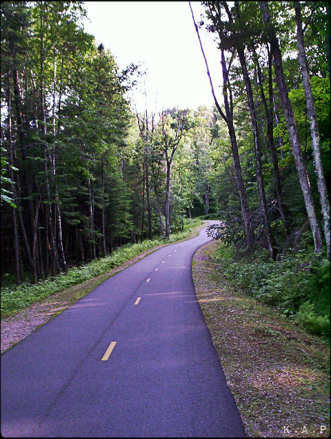 Cycling Path, nature, road, forward, laurentians, quebec, canada, forest