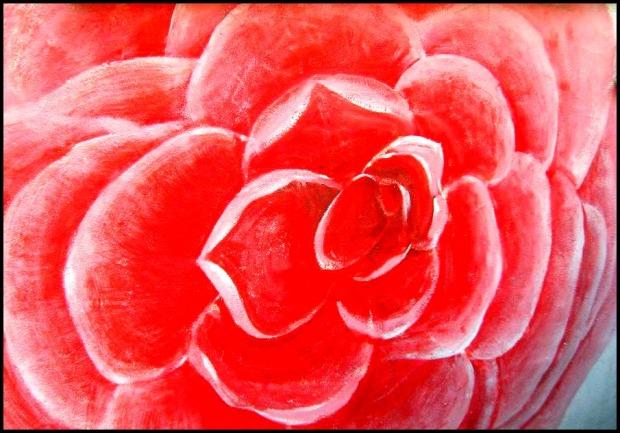 Gaemi Maeul, Ant Village, Seoul, South Korea, Art, Colorful wall, photography, rose. giant rose