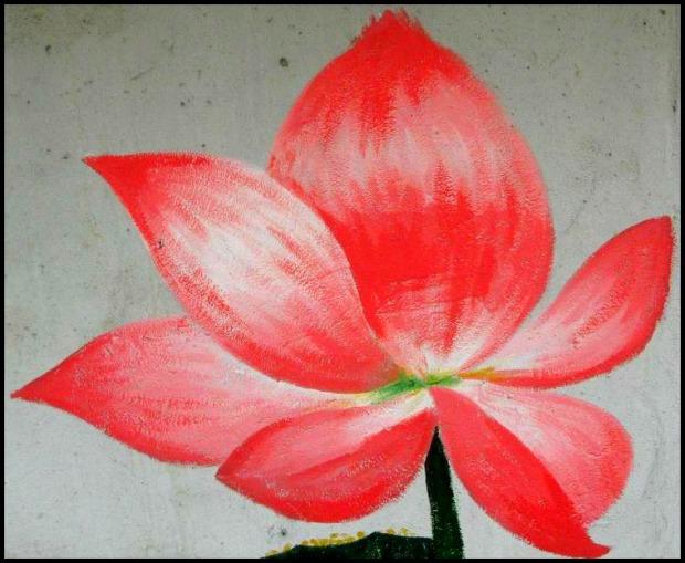 lotus, lotus flower, Gaemi Maeul, Ant Village, Seoul, South Korea, Art, colorful wall, photography,