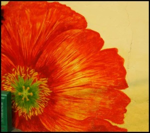 Gaemi Maeul, Ant Village, Seoul, South Korea, Art, colorful wall, photography, orange flower