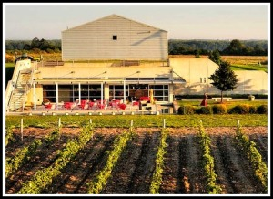 PEC Wineries, winery, wine, Prince Edward County, Ontario, Canada