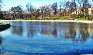 Lafontaine Park, Montreal, Park, Outdoors, Nature, Lake