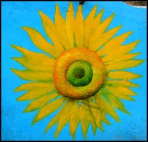 sunflower, Gaemi Maeul, Ant Village, Seoul, South Korea, Art, colorful wall, photography