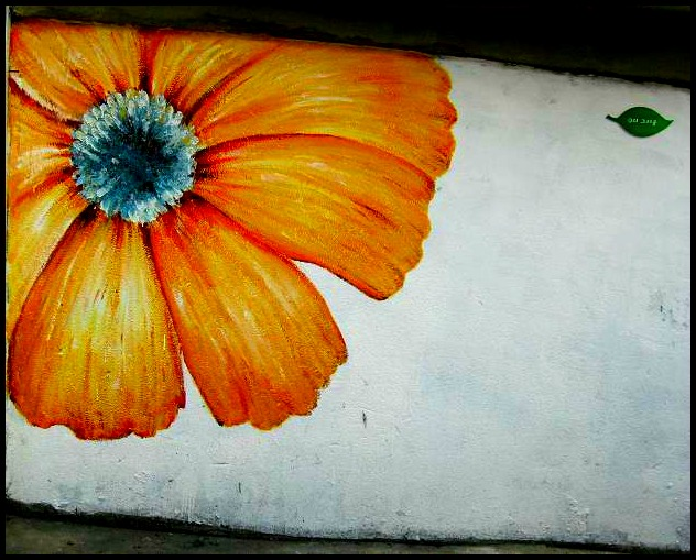 Gaemi Maeul, Ant Village, Seoul, South Korea, Art, orange flower, photography