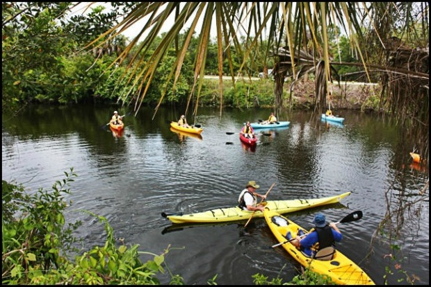 Phoenix Rising Kayak Tours, Kayak, Kayaking, SW Florida, Florida, Tours, Adventures,