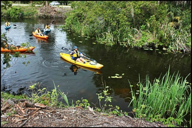 Phoenix Rising Kayak Tours, Kayak, Kayaking, SW Florida, Florida, Tours, Adventures