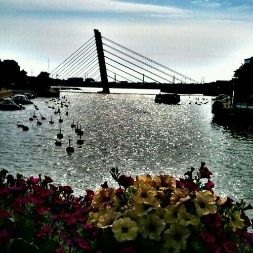 Crusellin Silta, Bridge, Ruoholahti Canal, Helsinki, Finland, travel, photography