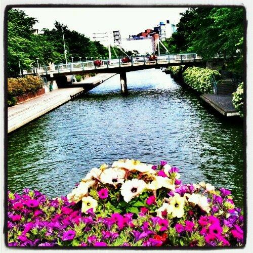 Ruoholahti canal, Helsinki, Finland, bridge, flowers, canal, view