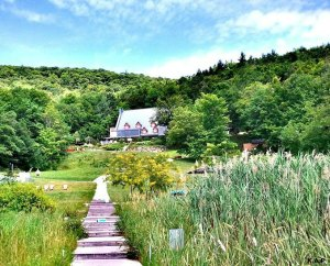 Balnéa Spa, Bromont, Quebec, Cantons de l'Est, Eastern townships, nature, green scenery, mountain, trees, nature, outdoors, spa,