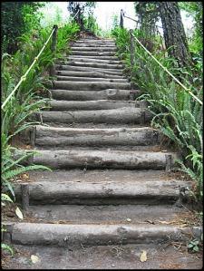 El Boqueron National Park, Parque Nacional El Boqueron, San Salvador, El Salvador, park, parque, crater, bosque, forest, hiking, caminata, Centro America, Central America, Travel, Viaje, steps, escalones