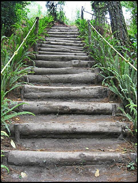 El Boqueron National Park, Parque Nacional El Boqueron, San Salvador, El Salvador, park, parque, crater, bosque, forest, hiking, caminata, Centro America, Central America, Travel, Viaje, day trip, viaje de dia