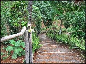 El Boqueron National Park, Parque Nacional El Boqueron, San Salvador, El Salvador, park, parque, crater, bosque, forest, hiking, caminata, Centro America, Central America, Travel, Viaje,