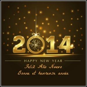 2014, happy new year, new year, HNY, HNY2014, new year wishes, feliz año nuevo, bonne année