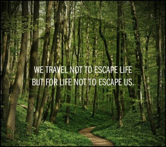 We travel, quote, travel quote