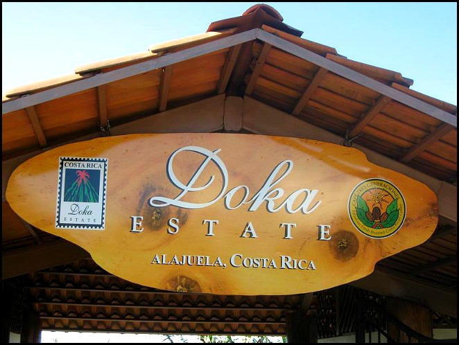 Doka Estate, Alajuela, Costa Rica, Centro America, coffee plantation