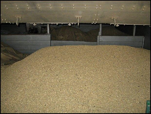 dried coffee, coffee in storage, Doka Estate, coffee plantation, Costa Rica, Central America