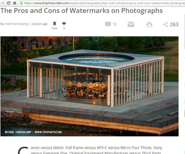 What exactly are the pros and cons of watermarks on photographs? Come read more about it and see if you should or shouldn't. #watermarks #copyright #photography #photographyrights #blog #blogging #bloggers