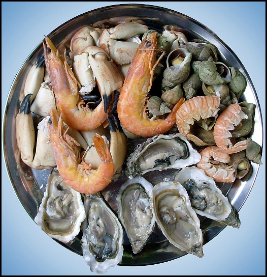 Seafood, seafood platter, southern food, Mississippi, food, foodie, foodporn
