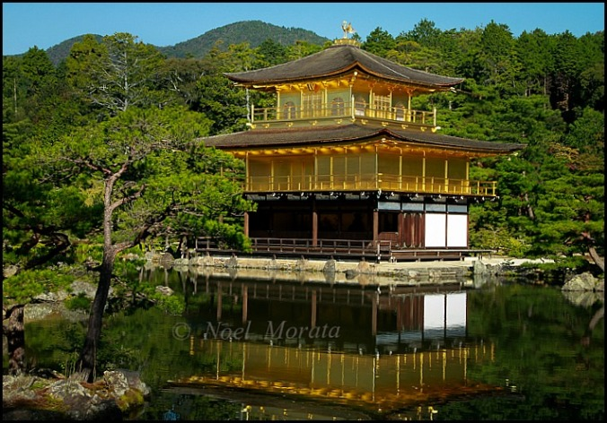 Golden Temple, Kyoto, Japan, travel, photography, Noel Morata, Noel Morata Photography