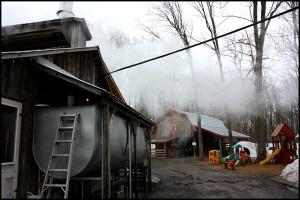 boiler room, Maple tree, érablier, tap hole, bucket, collecting sap, Cabane à sucre, Constantin Grégoire, sugar shack, St-Esprit, Québec