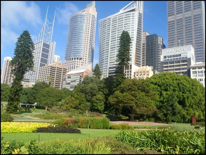 Sydney, Botanical Garden, Sydney Botanical Garden, Australia, travel, photography, outdoors, views