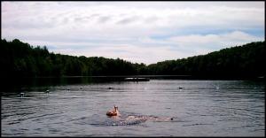 Lac Gale, Lake Gale, Spa Balnéa, Balnéa Spa, Balnéa, Bromont, Quebec, Spa, relaxation, nature, Quebec, Canada, TS76