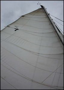 Mast, Smoke and Roses, Catamaran, SW FL, Florida, sailing, private charter, Charlotte Harbor, travel, TS76