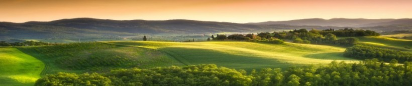 summer, landscape, italy, tuscany