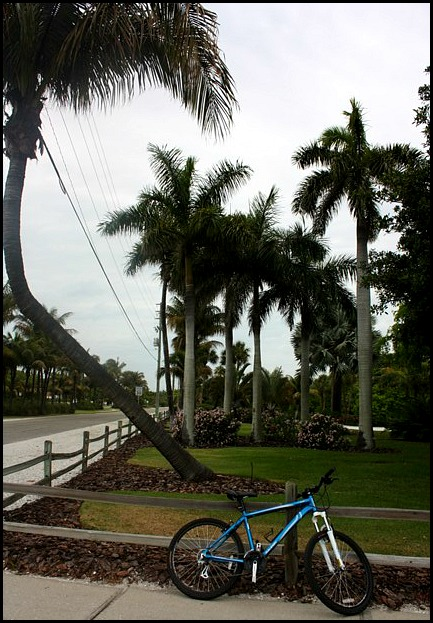 bike, bicycle, Boca Grande, Boca Grande Bike Path, Charlotte Harbor and the Gulf Islands, SwFL, Florida, travel, photography