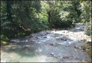 River, river stream, Costa Rica, Costa Rica country side, nature, Tiquicia, Central America, Centro America, TS76, travel, photography