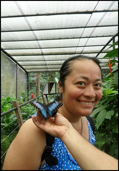 Blue Morpho Butterfly, Butterfly, Canopy Safari Tour, Manuel Antonio, Costa Rica, Sign, TS76, photography