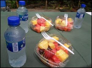 Light snack at Parque Nacional Manuel Antonio, Costa Rica, Park, nature, travel, photography, TS76