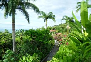 hotel, garden, path, view, Punta Quepos, Parador Resort and Spa, Costa Rica, travel, photography