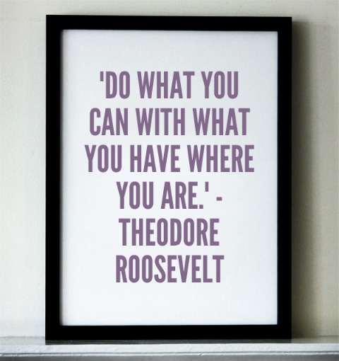 success, quote, success quote, Theodore Roosevelt, motivation, inspiration, TS76