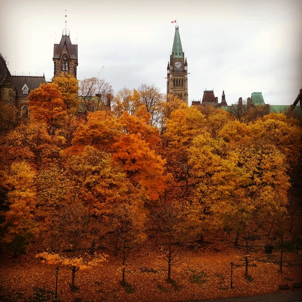 Fall foliage, Ottawa, Ontario, Canada, November 2014, travel, photography, TS76