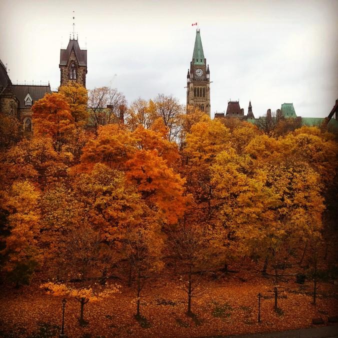 Fall foliage, Ottawa, Ontario, Canada, November 2014, travel, photography, TS76