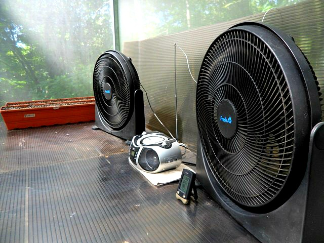 fans, radio, greenhouse, Parador Resort and Spa, Costa Rica