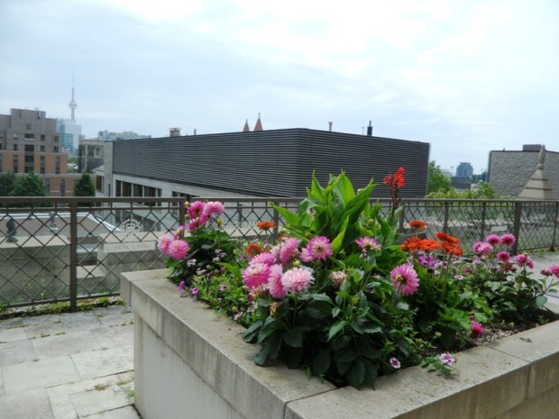 Windsor Arms Hotel, spa, terrace, Toronto, Ontario, Canada, TS76